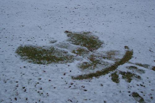 Snow08 021