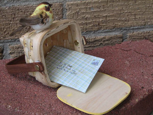 Sparrowpost5