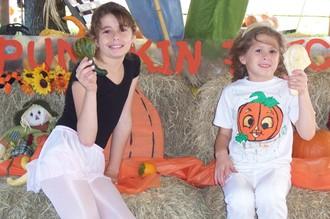Pumpkin_patch_010