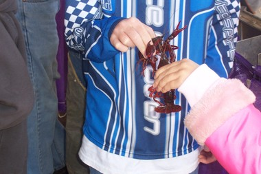 Crawfish_field_trip_026