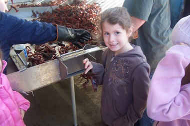 Crawfish_field_trip_035